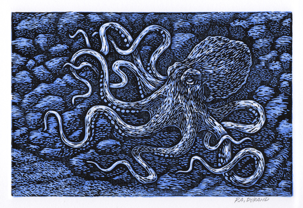 "Lino-cut ""OCTOPUS"" By Peter A. Durand"