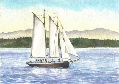 Sailboat - watercolor by Peter Durand