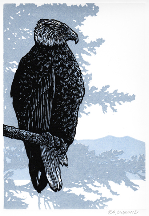 "Lino-cut ""PERCHED EAGLE"" By Peter A. Durand"