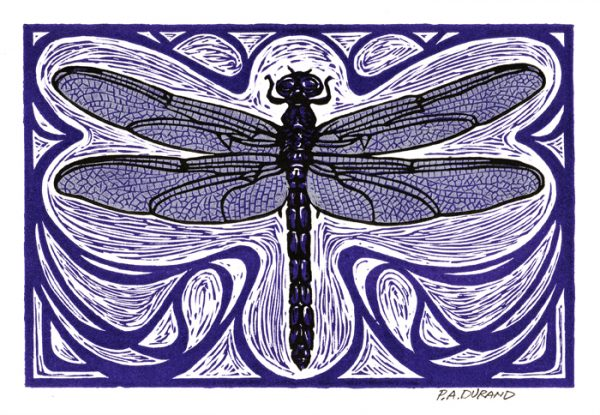 "Lino-cut ""DRAGONFLY"" By Peter A. Durand"